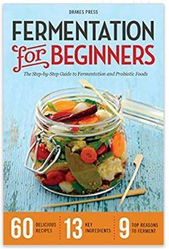 fermentation for beginners book