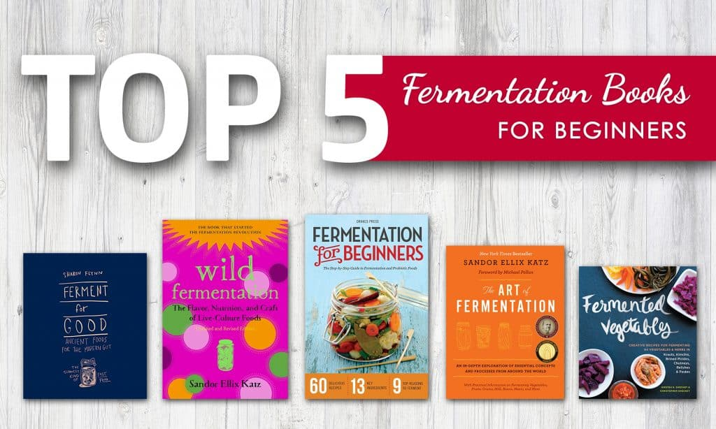 Top 5 Fermentation Books for Beginners