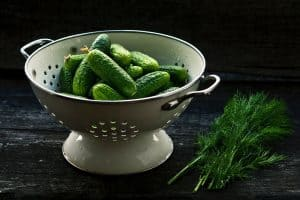 pickling -light green cucumbers with dill