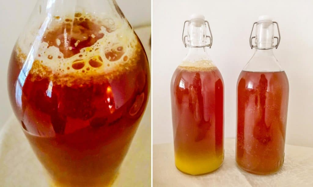 Three-bottles-of-kombucha