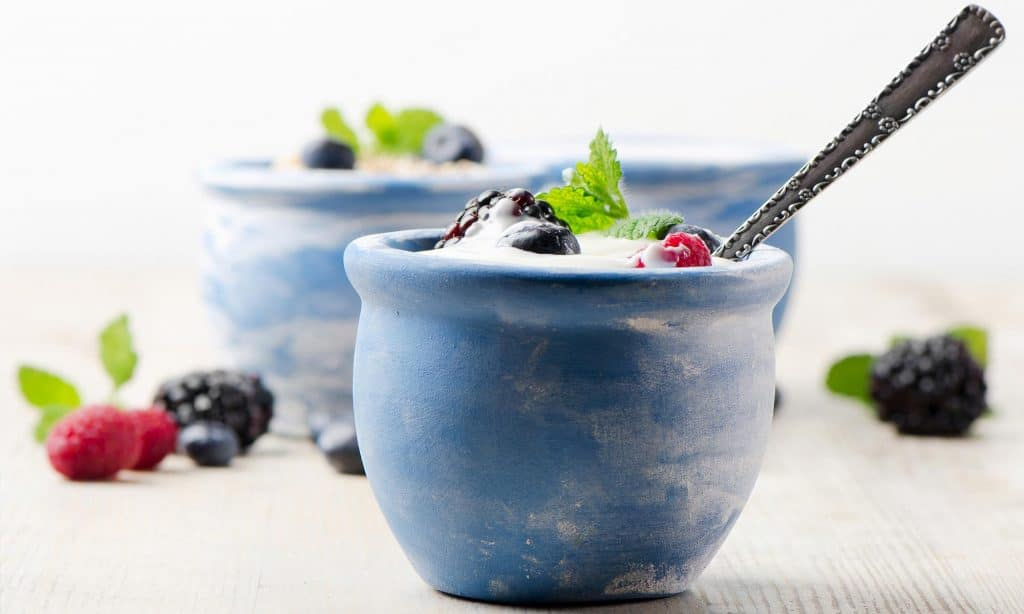 Yogurt in a bowl with fruit
