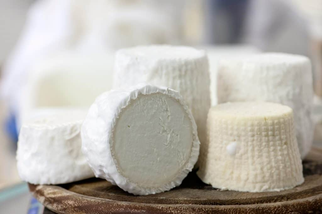 Pule Cheese: The Most Expensive Cheese in the World