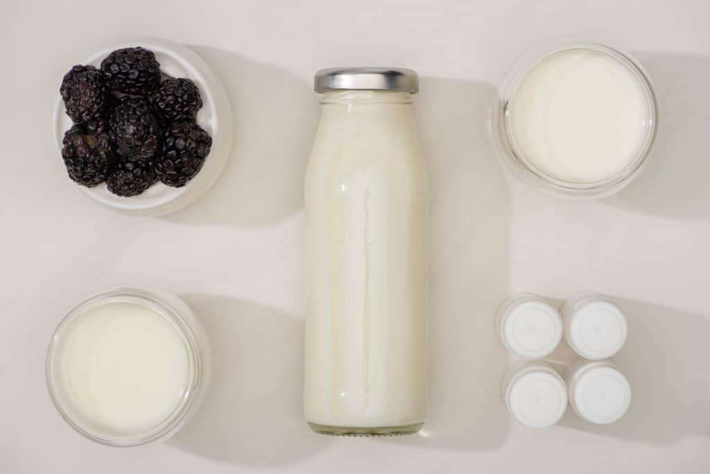 How to Choose the Best Yogurt Starter Culture