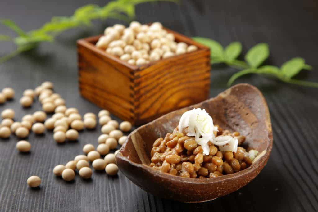Fremented soy beans NATTO