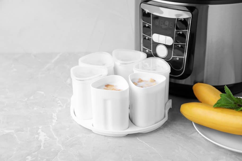 The Best Yogurt Maker to Buy