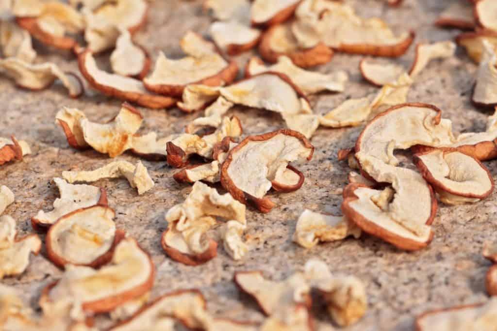 Sun drying sliced apples