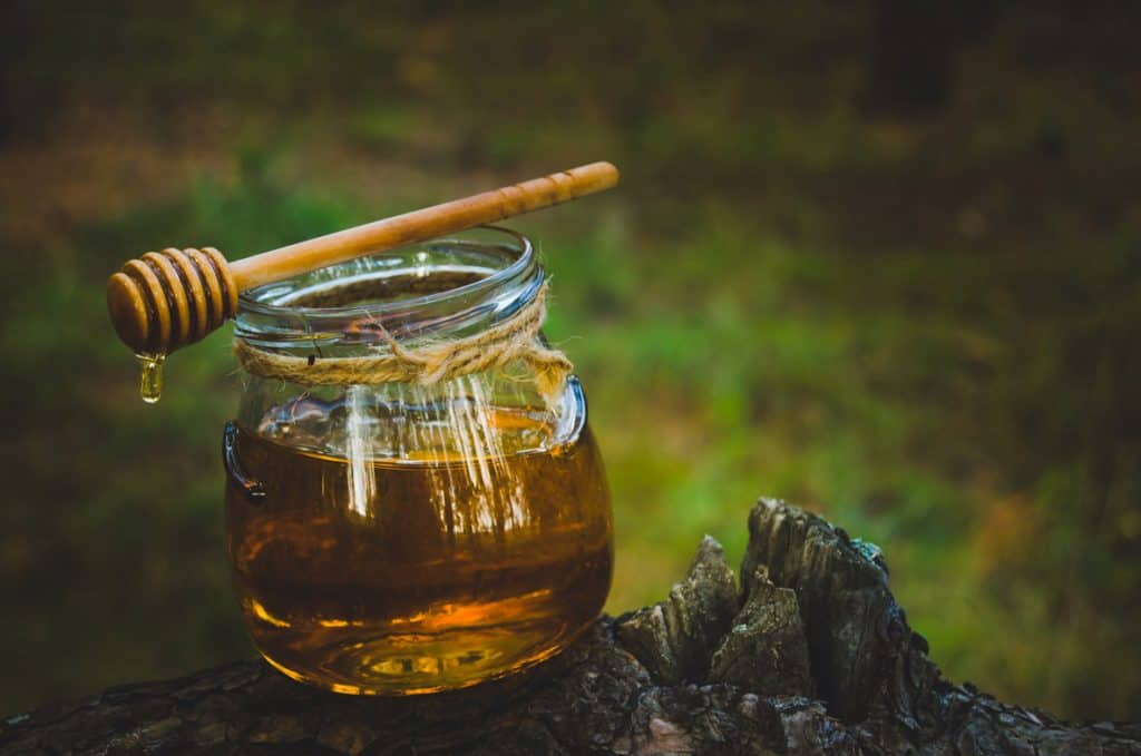 How to Make Mead [Traditional and Spiced]