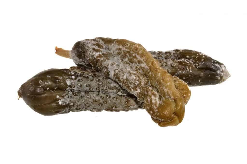 Rotten pickles