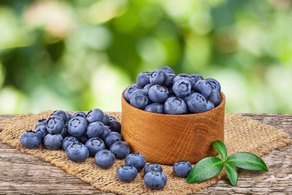 Blueberry Mead Recipe
