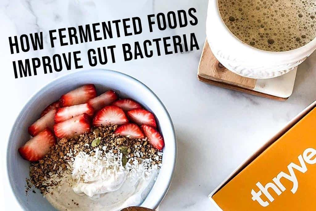 How Kombucha, Apple Cider Vinegar, And Other Fermented Foods Improve Gut Bacteria