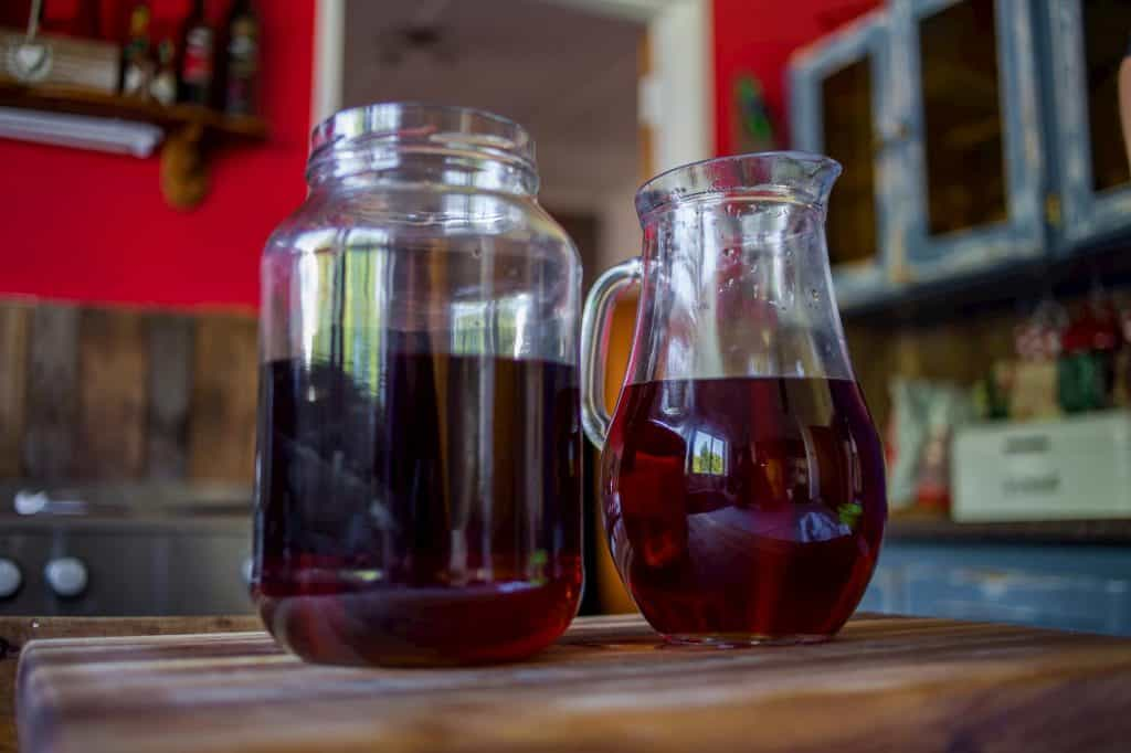 Elderberry Kombucha Recipe