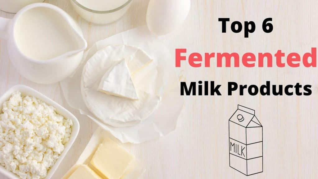 6 Fermented Milk Products